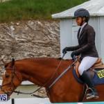 Bermuda Equestrian Federation Stardust Jumper Series, February 3 2018-7269