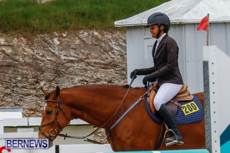 Bermuda-Equestrian-Federation-Stardust-Jumper-Series-February-3-2018-7269