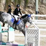 Equestrian Bermuda Feb 28 2018 (11)