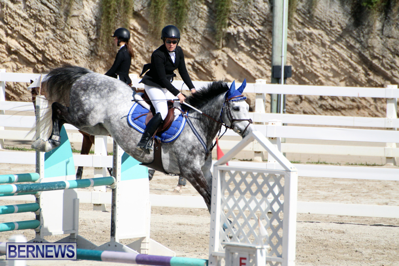 Equestrian-Bermuda-Feb-28-2018-11