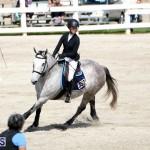Equestrian Bermuda Feb 28 2018 (14)