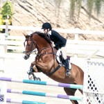 Equestrian Bermuda Feb 28 2018 (16)