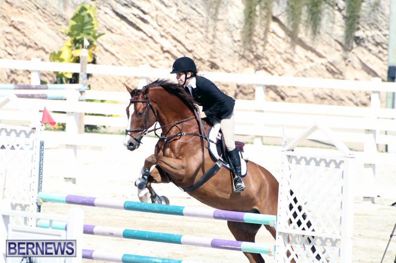 Equestrian-Bermuda-Feb-28-2018-16