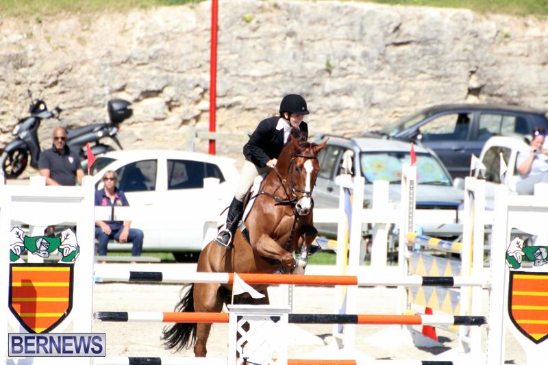 Equestrian-Bermuda-Feb-28-2018-17