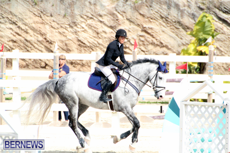 Equestrian-Bermuda-Feb-28-2018-3