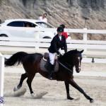 Equestrian Bermuda Feb 28 2018 (5)