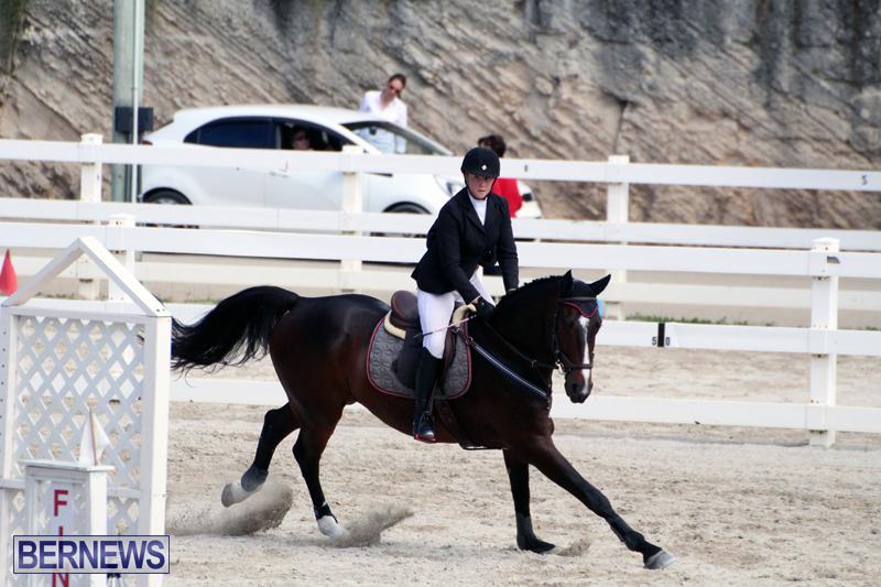 Equestrian-Bermuda-Feb-28-2018-5