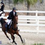 Equestrian Bermuda Feb 28 2018 (8)
