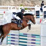 Equestrian Bermuda Feb 28 2018 (9)