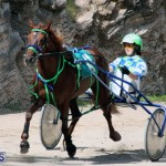 Harness Pony Racing Bermuda Feb 21 2018 2 (14)