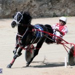 Harness Pony Racing Bermuda Feb 21 2018 2 (16)