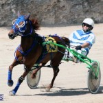 Harness Pony Racing Bermuda Feb 21 2018 2 (17)