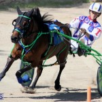 Harness Pony Racing Bermuda Feb 21 2018 2 (19)