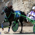 Harness Pony Racing Bermuda Feb 21 2018 2 (3)