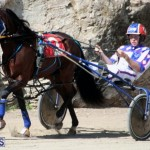 Harness Pony Racing Bermuda Feb 21 2018 2 (4)