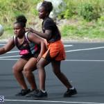 Netball Junior & Senior Bermuda Feb 10 2018 (1)