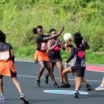 Netball Junior & Senior Bermuda Feb 10 2018 (17)