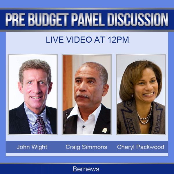 Pre-Budget Panel Discussion IG 1
