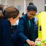 Saltus Science Fair Feb 2018 (17)