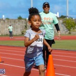 Telford Electric Magic Mile Bermuda, February 24 2018-2276