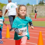 Telford Electric Magic Mile Bermuda, February 24 2018-2350