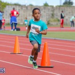 Telford Electric Magic Mile Bermuda, February 24 2018-2446