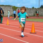Telford Electric Magic Mile Bermuda, February 24 2018-2476