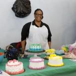 Whitney Institute Middle School Career Fair Bermuda Feb 9 2018 (27)