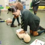Whitney Institute Middle School Career Fair Bermuda Feb 9 2018 (42)