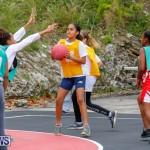 Zone Netball Bermuda, February 3 2018-7413