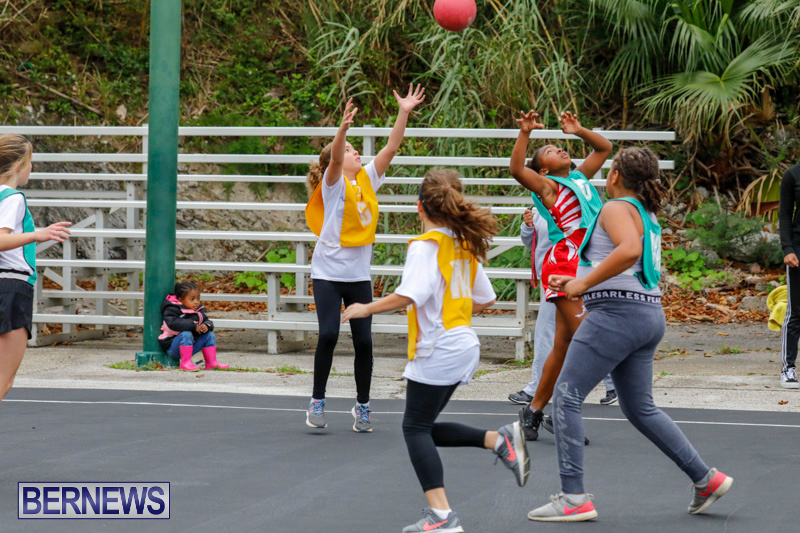 Zone-Netball-Bermuda-February-3-2018-7420