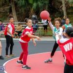 Zone Netball Bermuda, February 3 2018-7527