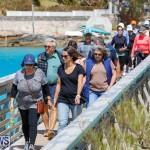 Bermuda National Trust Palm Sunday Walk, March 25 2018-5433