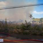 Devonshire Marsh Fire Mar 17 (12)