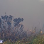 Devonshire Marsh Fire Mar 17 (16)