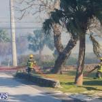 Devonshire Marsh Fire Mar 17 (23)