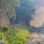 Devonshire Marsh Fire Mar 17 (25)