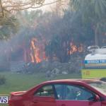Devonshire Marsh Fire Mar 17 (26)