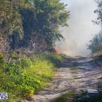 Devonshire Marsh Fire Mar 17 (27)