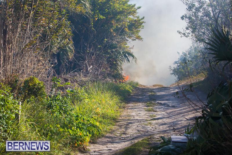 Devonshire-Marsh-Fire-Mar-17-27