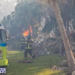 Devonshire Marsh Fire Mar 17 (28)