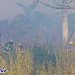 Devonshire Marsh Fire Mar 17 (3)