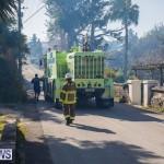 Devonshire Marsh Fire Mar 17 (44)