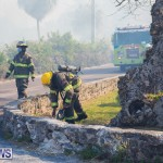 Devonshire Marsh Fire Mar 17 (45)
