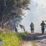 Devonshire Marsh Fire Mar 17 (48)