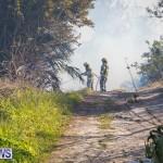Devonshire Marsh Fire Mar 17 (49)