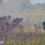 Devonshire Marsh Fire Mar 17 (8)