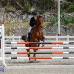 FEI World Jumping Challenge Bermuda, March 31 2018-8012