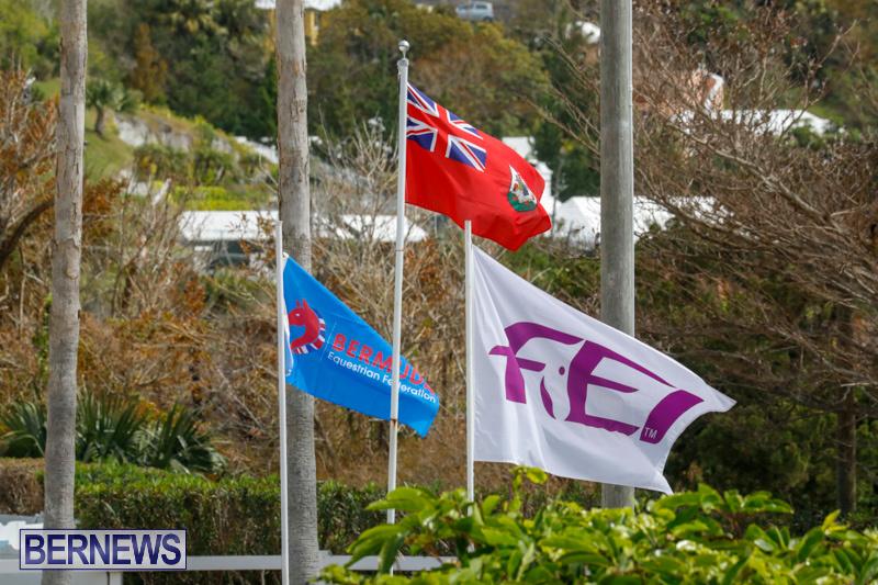 FEI-World-Jumping-Challenge-Bermuda-March-31-2018-8022