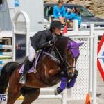 FEI World Jumping Challenge Bermuda, March 31 2018-8024